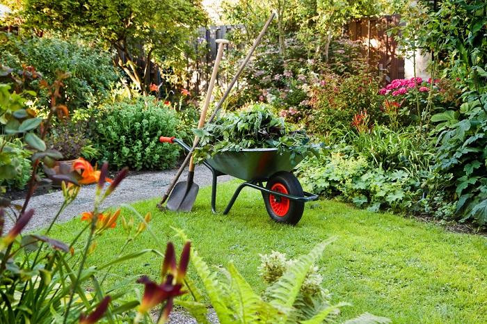 работа в саду осенью