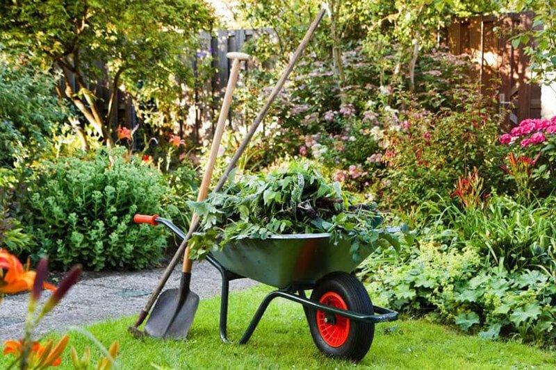 уход за садом осенью и инструменты для работы