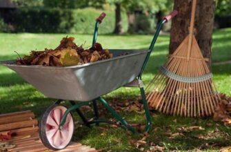 уборка садового участка осенью